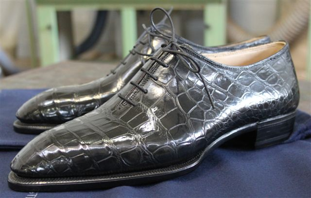 Today's Favorites - Crocodile Whole Cuts by Riccardo Bestetti