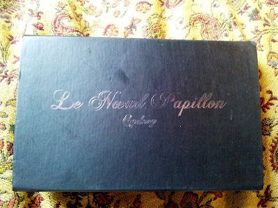 What I Am Wearing - Le Noeud Papillon